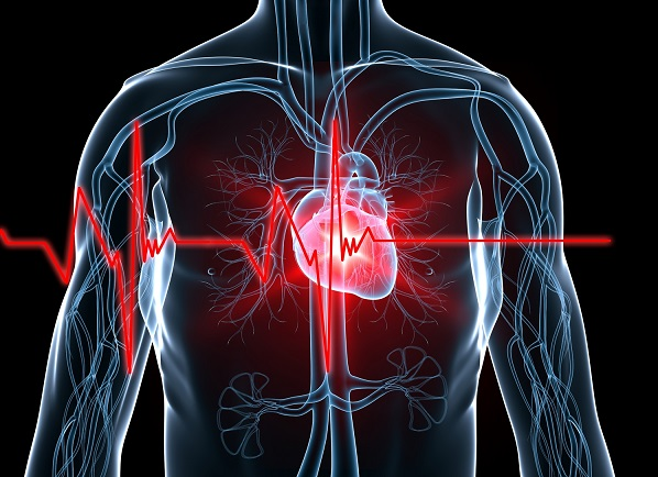 Perbedaan Penyakit Jantung Pada Anak Dan Dewasa